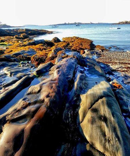 Boothbay Harbor Maine Rocks Ocean Sand Salt Air