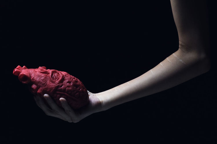 Close-up of hand holding red rose over black background