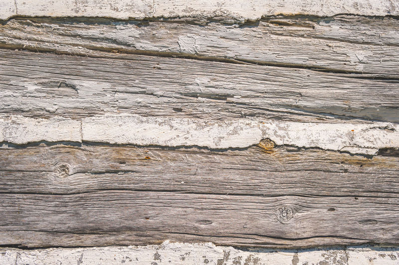Texture of old log home with cement joints 19th Century 19th Century Buildings Backgrounds Building Exterior Close-up Day Dirty Hardwood Marble Nature No People Old Buildings Outdoors Pattern Stone Material Textured  Timber Wood - Material