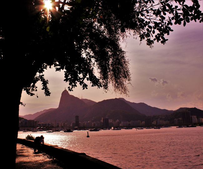 Beauty In Nature Distant Light Outdoors Reflection Rio De Janeiro Urca Standing Water Tranquil Scene Tree Waterfront Golden Hour