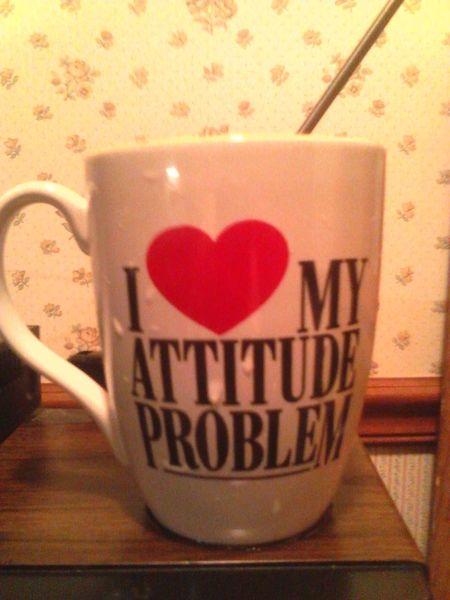 I Got That Fuck It Attitude