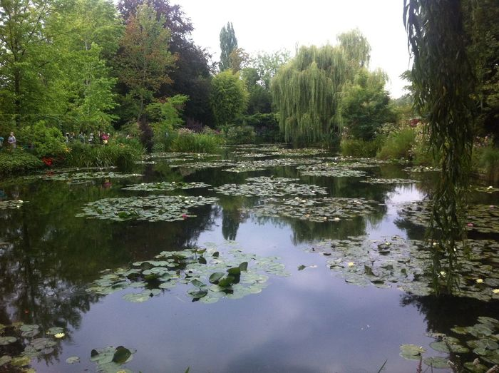 Giverny, France. Monet Monet Garden Flowers Garden Lake Monet House Nature No People Outdoors Reflection Scenics Searoses Tranquil Scene Water
