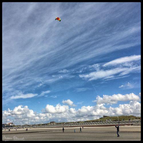 Kite. Sky Day