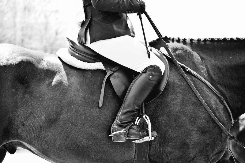 Low section of jockey on horse