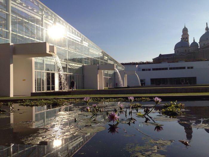 City Of Padova Botanical Gardens BotanicGardens Botanic