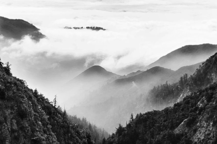 Beautiful Cloud Dramatic Sky Gradient Moody Sky Tree Beauty In Nature Clouds Contrast Fog Hazy  Monochrome monochrome photography Moody Mountain Mountain Range Nature No People Outdoors Scenics Sky Tranquil Scene Tranquility Tree