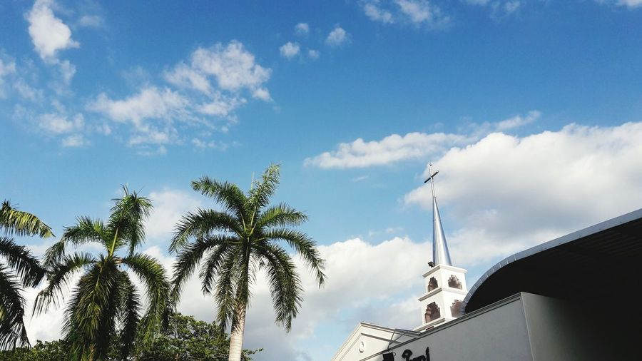 Low angle view of church by palm trees against sky