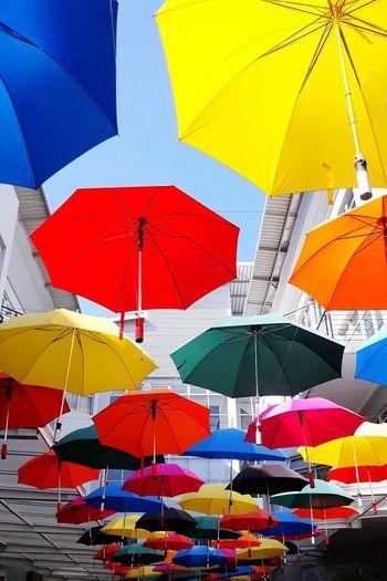 Multi colored umbrella