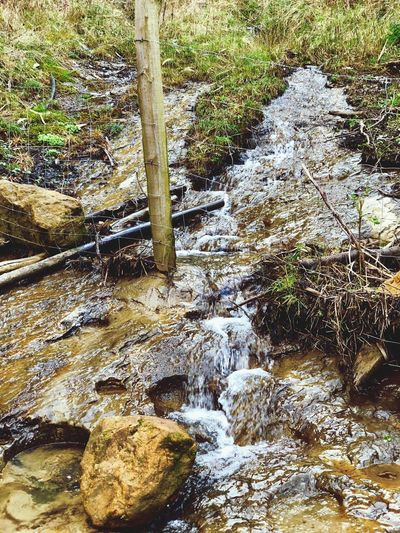 Flowing Water Water Stream Motion Nature Day Rock - Object