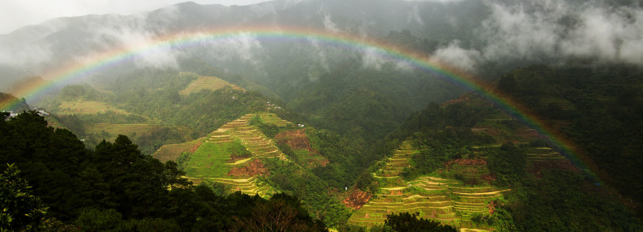 Banaue Rice Terraces Luzon Tourist Attraction  World Heritage Agriculture Ancient Civilization Beauty In Nature Day Landscape Mountain Nature No People Outdoors Rainbow Scenics Spectrum Terraced Rice Fields Tranquil Scene Tranquility
