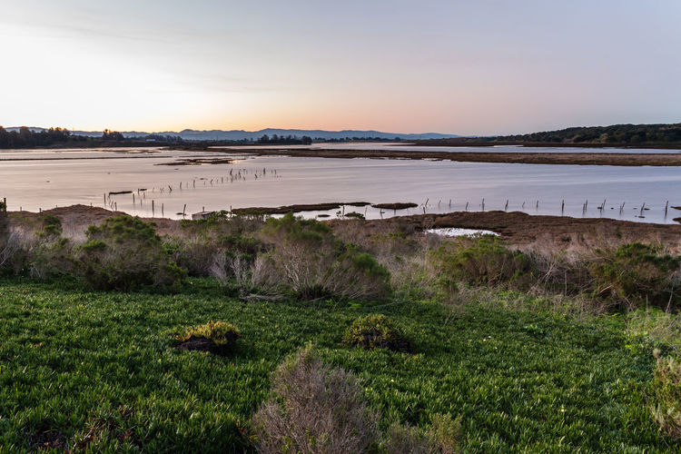 Flooding ICE PLANT Landscape Nature No People Outdoors Sky Skyline Sunrise Water Watershed