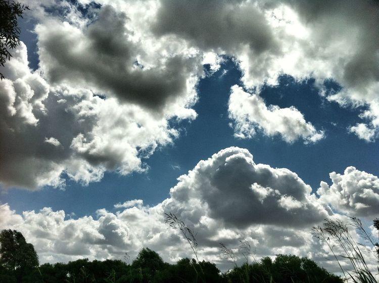 Sunset #sun #clouds #skylovers #sky #nature #beautifulinnature #naturalbeauty #photography #landscape Clouds And Sky