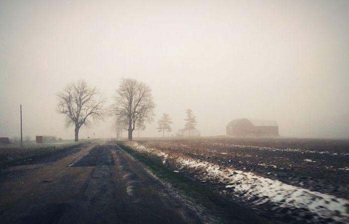 Frankenmuth Michigan Farm Foggy Day Landscape Backroads Michigan