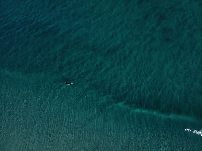 Aerial view of man paddleboarding in sea