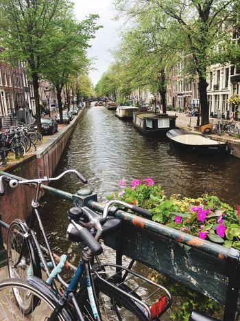 Amsterdam Travel Beautiful Town Bicycle Canal Photosfio