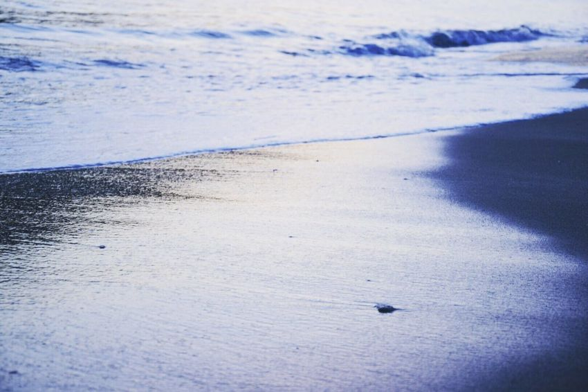Sea Beachlovers Naturelovers Beach View いつもの海 EyeEm Nature Lover Sunrise_Collection
