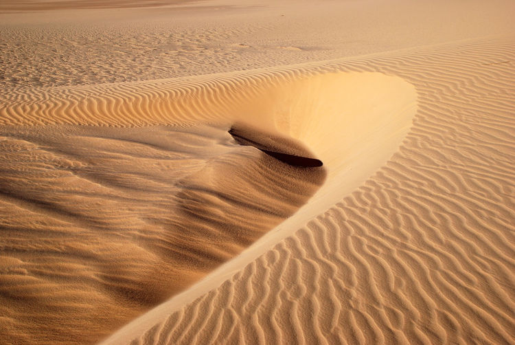 View Of Rippled Patterns On Sand Dune