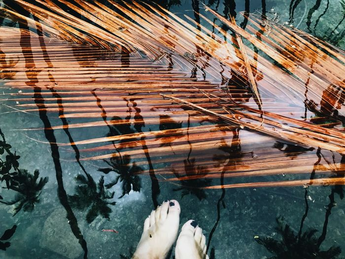 EyeEm Selects Low Section Human Leg Human Foot High Angle View Human Body Part Real People One Person Water Barefoot Outdoors Day Nature People