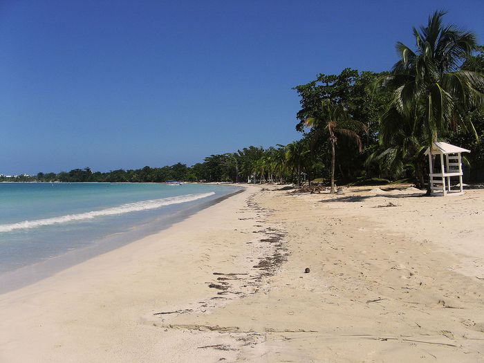 Negril Bea Beach Clear Sky No People Our Beach Sand Tree