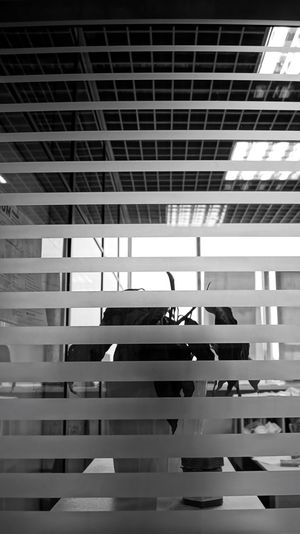 Blackandwhite Black & White Low Angle View No People Geometric Shape Plant Place Glass - Material Glass Lines Prison Office Building Plant In Prison Captivity All Of Us Is Prisoner Office Prisoner