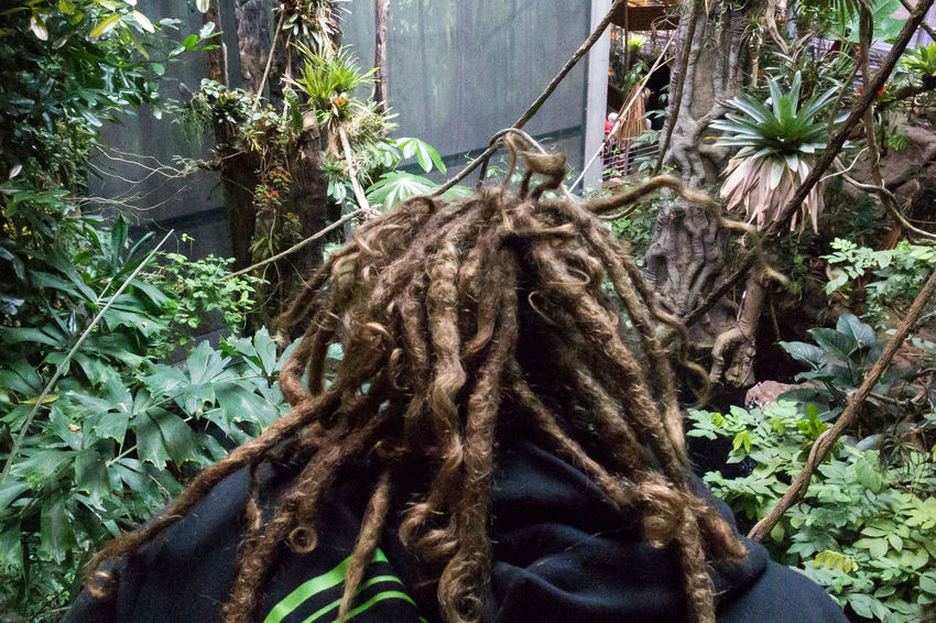 San Francisco Street Photography Streetphotography Hair Dreadlocks California Academy Of Science Up Close Street Photography Let Your Hair Down The Street Photographer - 2016 EyeEm Awards Natural Light Portrait Original Experiences TakeoverContrast