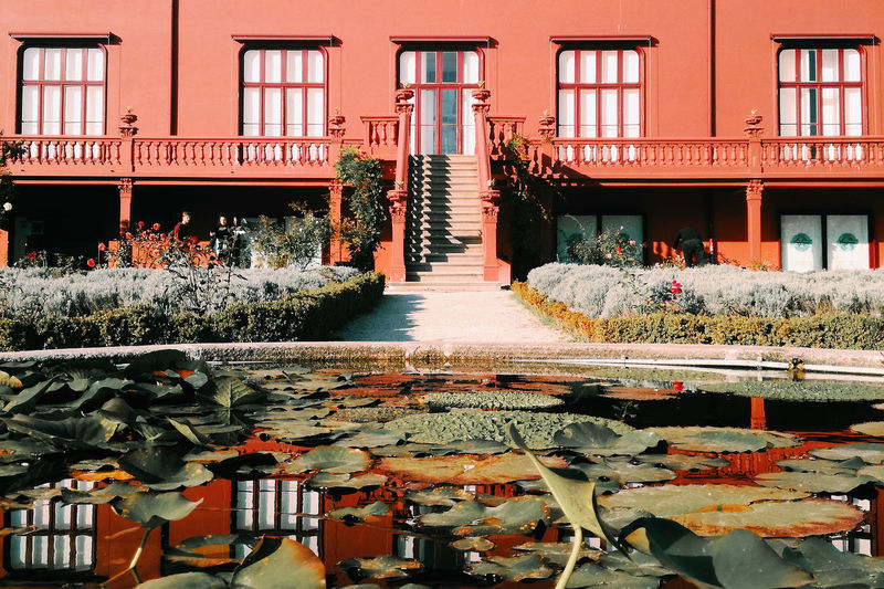 Red House Garden Waterplants Reflection Stairs Windows Architecture Outdoors EyeEmNewHere