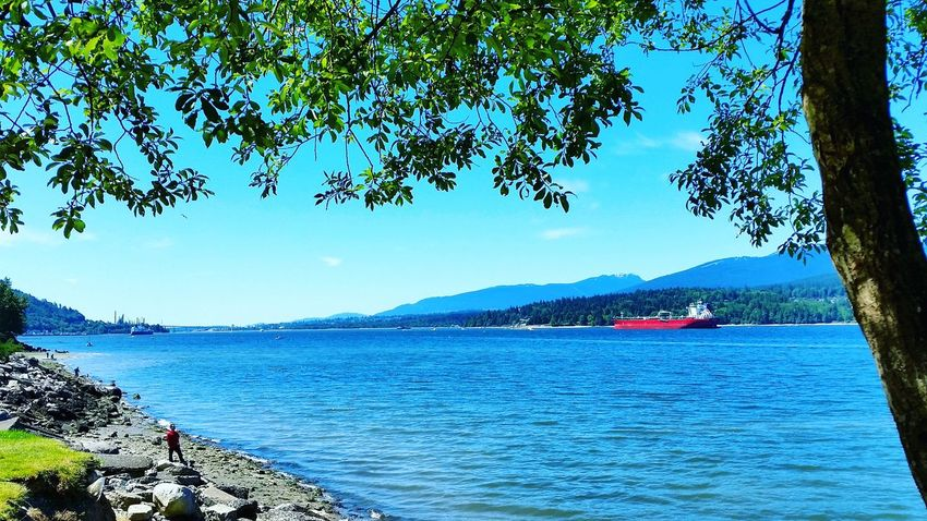Beautiful British Columbia Barnett Marine Park Burrard Inlet Blue Skies Blue Water