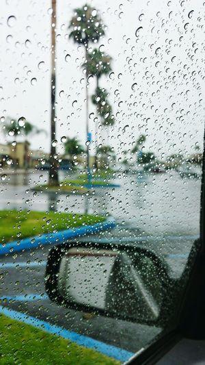 Rainy day. Relaxing Rainy Days Raindrops