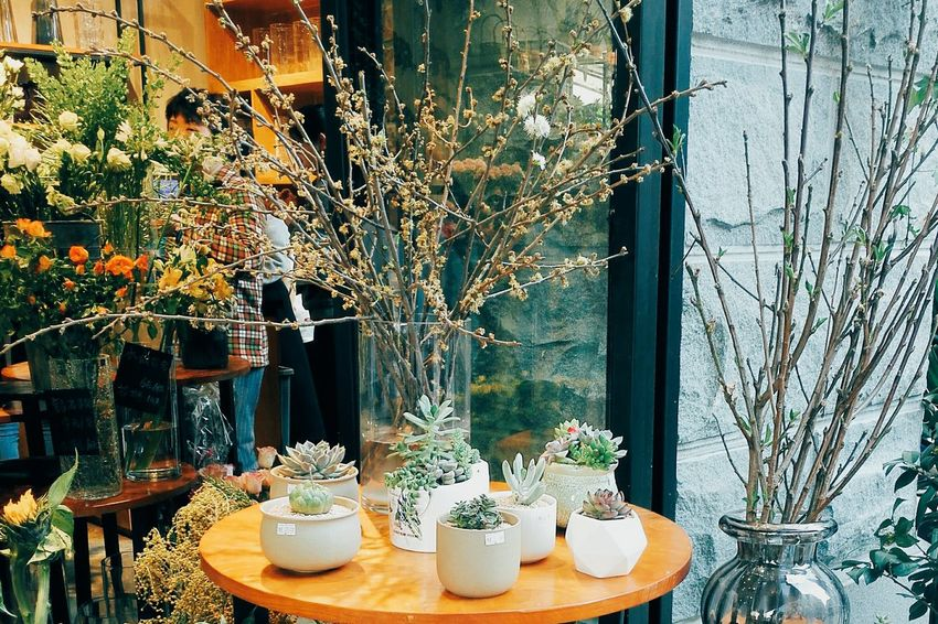 Window Indoors  Table No People Day Variation Curtain Store Sweet Food Flower Close-up
