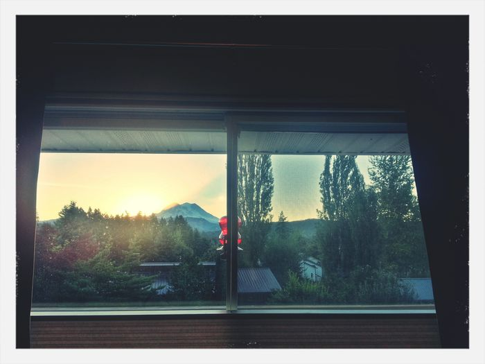 GOOD MORNING from The View From My Window ! :) KimberlyJTilley