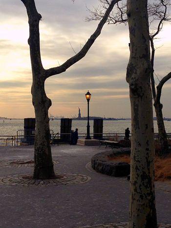 New York lights EyeEmNewHere Lantern New York Harbor New York Sky Water Sea Outdoors Tree Nature Beach Tree Trunk No People