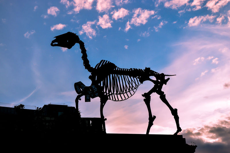 Low angle view of silhouette skeleton against sky