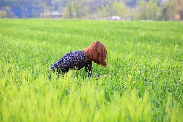 Mid adult woman on rice paddy field