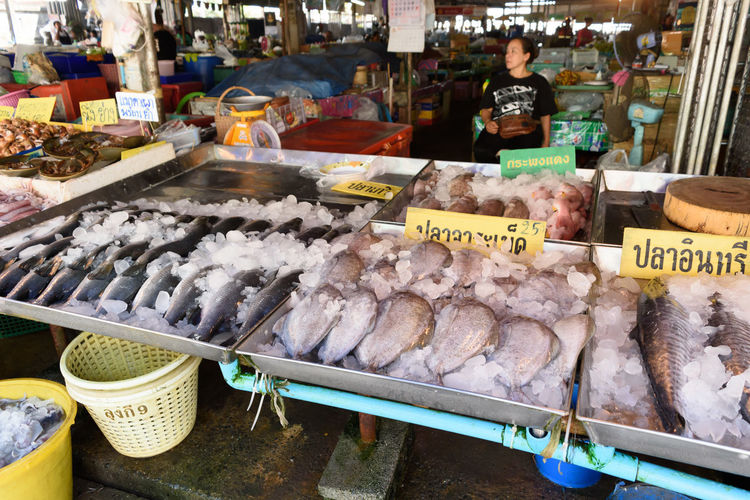 Fish for sale at market stall