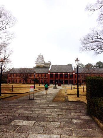Japan Japanese Culture Culture Enjoying Life EyeEm Nature Lover Castle Himeji Castle