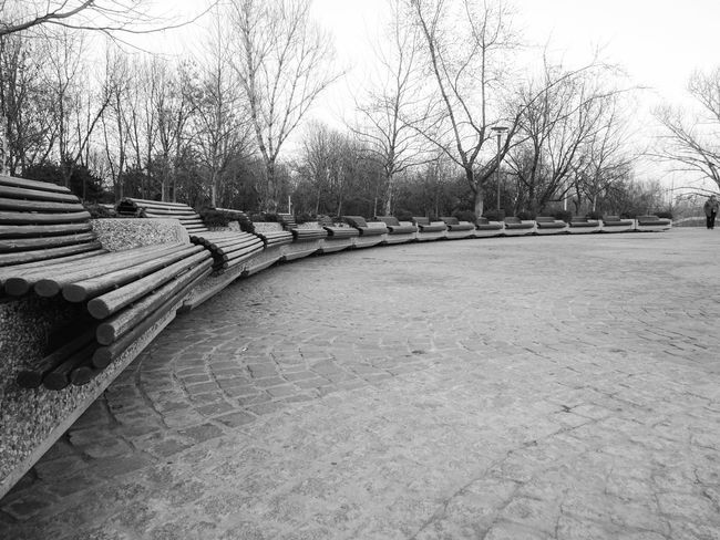 15+1 Benches Park Black And White Black & White Blackandwhite Black And White Photography B&w From My Point Of View EyeEm Gallery Outdoors EyeEm Best Shots EyeEm Best Shots - Black + White Man Row Row Of Things Spring Spring Is Coming  Park Bench Here Belongs To Me Bucharest