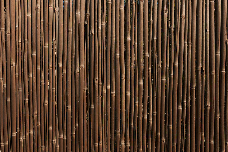 Backgrounds Full Frame Pattern Brown Metal Textured  No People Wood - Material Rusty Wood Outdoors Wood Grain Day Design In A Row Repetition Abstract Modern Close-up Textured Effect Cane Corso Barrel