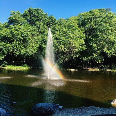 Cancún México ! Cancun Paradise Rainbow Natural Beauty Laggon