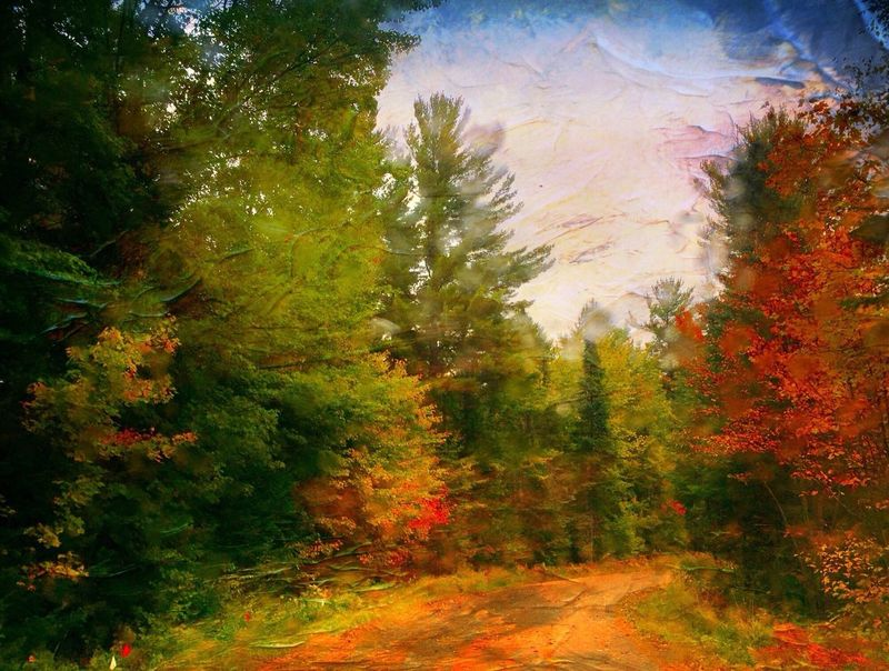 IPhone Photo Of The Day Tranquility Tranquil Scene Nature Outdoors The Way Forward Beauty In Nature Solitude Treeswithfallcolor Painterly Distressed FX Road Scenics Northern Wisconsin Calm Iphonephotography Iphone6 Photowalk Iphonephotooftheday Iphonephotographyschool