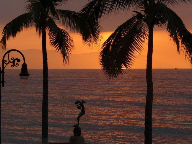 Puerto Vallarta Mexico Sunset Sunset_collection Sunset Silhouettes Sunset Silhouette Orange Sunset Silhouette Silhouettes Landscape Landscape_Collection Landscape_photography Landscapes Landscape_photography Orange Seascape Pacific Sunset Tropical Paradise