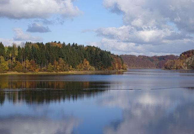 Wenn schon Spiegelung, dann aber richtig Autumn Drinking Water Wahnbachtalsperre Beauty In Nature Cloud - Sky Day Drinking Water Reservoir Forest Lake Landscape Mountain Nature No People Outdoors Reflection Scenics Sky Tranquil Scene Tranquility Tree Water
