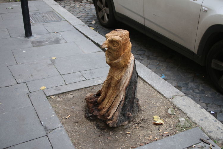 Ancient City Art City Break Day Europe Head Sculpture High Angle View Italia Italy Nose Outdoors Rome Rome, Italy Sculpture Sky Street Art Streetphotography Tree Tree Art Tree Stump Tree Trunk