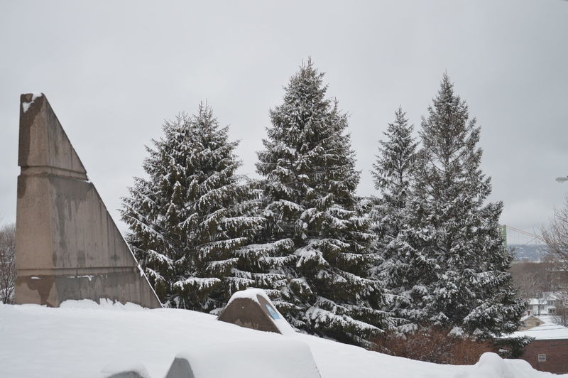 Snow covered building terrace and trees against sky