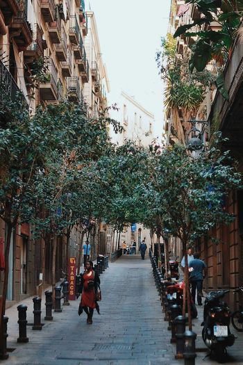 Gold CopyrightPiotrSzuber Barcelona Streetphotography Streetlife Architecture Cityscapes VSCO Vscocam C8
