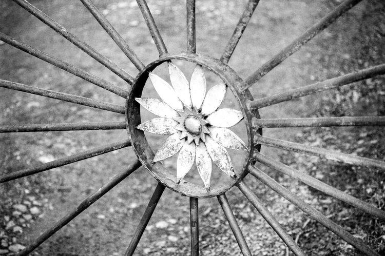 Location: Reuterstraße Canon AE-1 P | APX 100 -> 200 | D-76 AgfaPhoto APX 100 (new) Blackandwhite Canon AE-1 Program  EyeEm Best Shots - Black + White Film Is Not Dead Film Photography Kodak D-76 Monochrome
