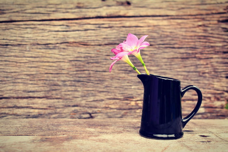 Pink Flowers In Pitcher On Wooden Table