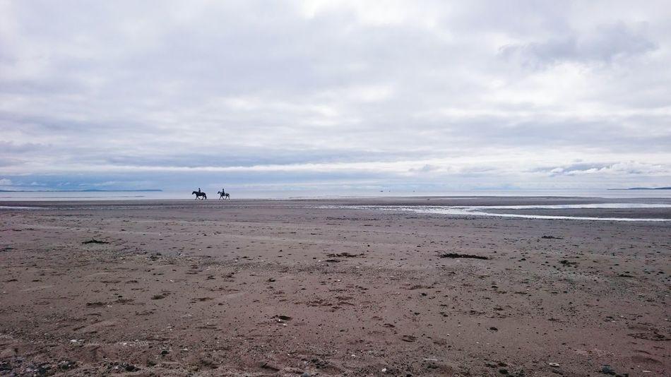 Horse Riding Horses On The Beach Horses Walking Horse On Beach Beach Beach Life Beach Photography Beachphotography Beachlife Beach Walk Beaches Beach View BEACH!  Scottish Beaches Scottish Beach Scotland Sands Of Luce Luce Bay Sandhead Sandhead Beach