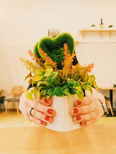 Indoors  Tree Close-up Day Nature Decoration Plant Heart Shape Heart Heart ❤ Nails Nailpolish Manicures Cafe Woman Gift Present Coffee Shop Scene Coffee Shop Fashion Colourful Colors Give Love Lovely