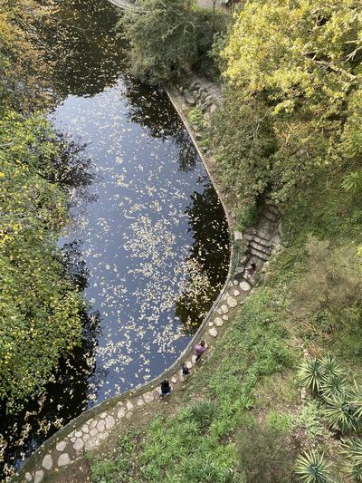 High angle view of footpath by canal