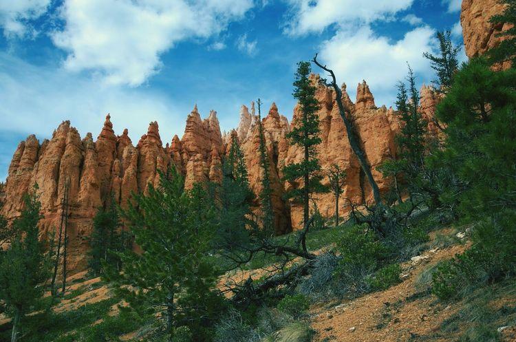 Une belle region Bryce Canyon USA Landscape Beautiful Place Enjoying The View Beautiful Nature Traveling